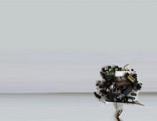 drzewo_2 - Piotr Smogór
